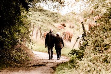 Socialjura Socialøkonomi Fjordland økonomi social- og arbejdsmarkedslovgivningen barsel efterløn pension sygdom invaliditet fleksjob førtidspension